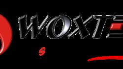 Woxter entre los 5 principales fabricantes de electrónica de consumo en España