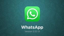 1 de cada 7 personas en el mundo ya utiliza WhatsApp