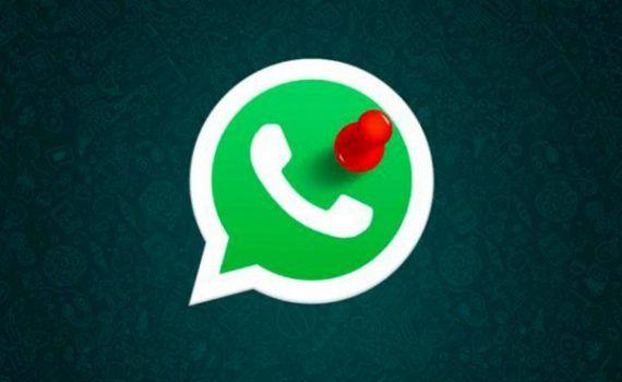 WhatsApp fijar conversaciones