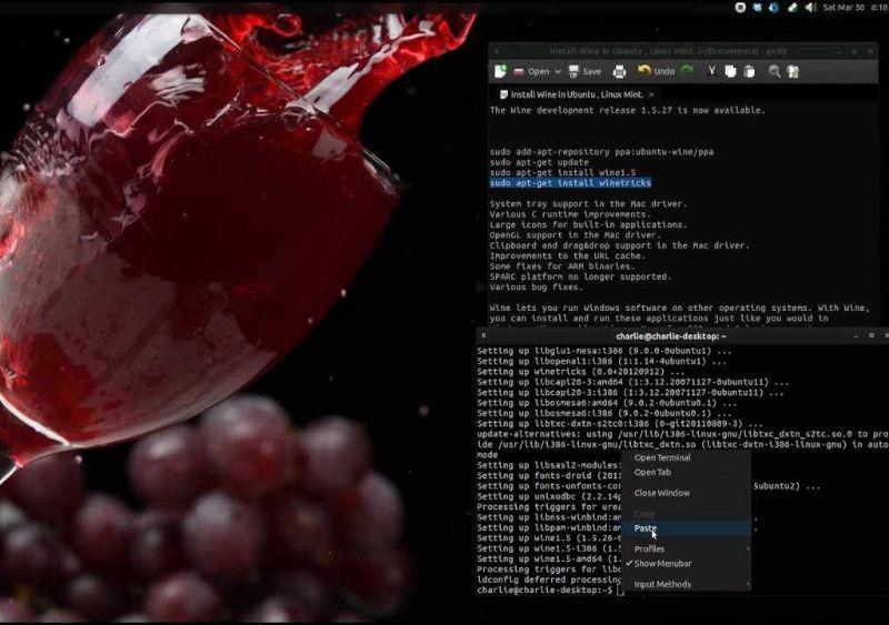 minerando bitcoins linux wine
