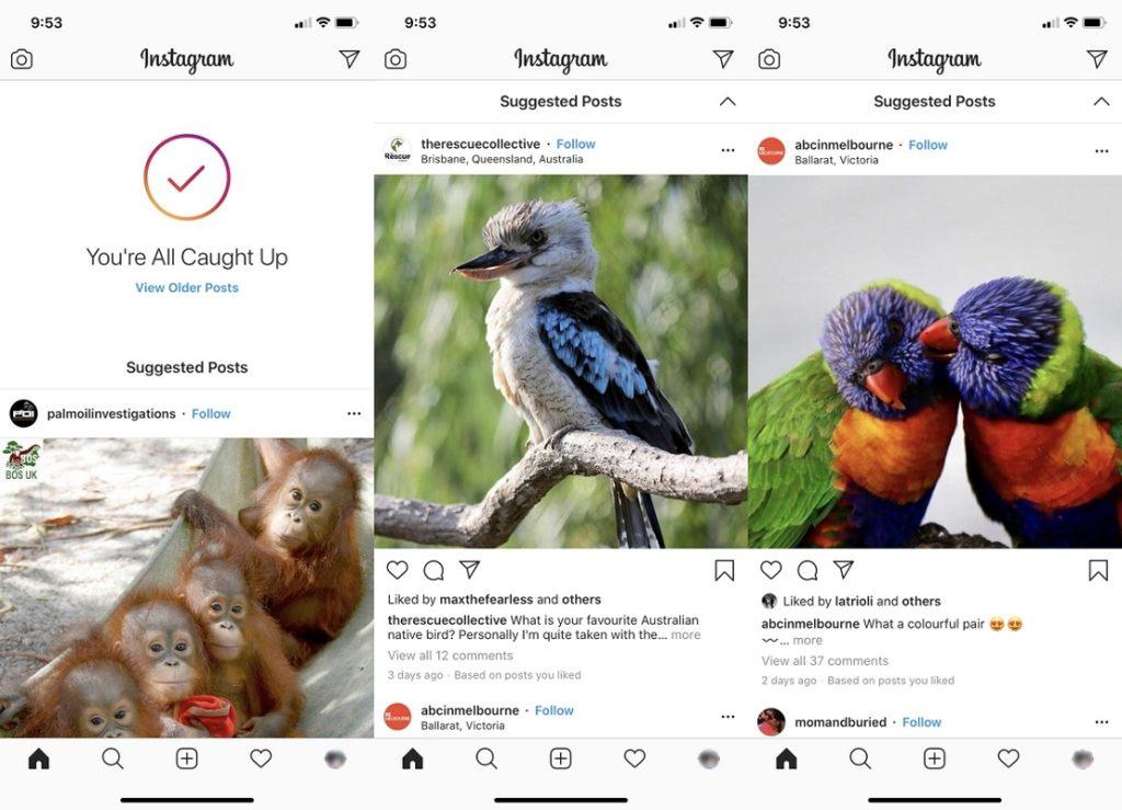Instagram Publicaciones sugeridas 4