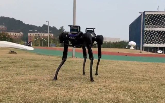El perro robot que aprendió a levantarse luego de ser derribado