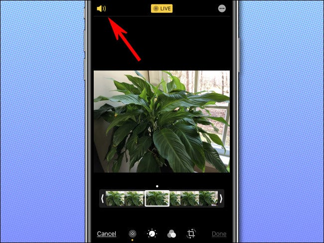 Click on the audio icon to remove the sound from the Live Photo