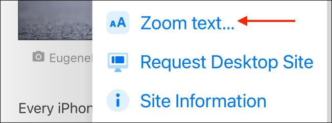Pulsamos en Zoom de texto.