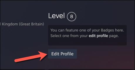 Tendremos que editar nuestro perfil de Steam.