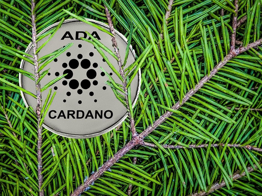Cardano testnet Alonzo 3