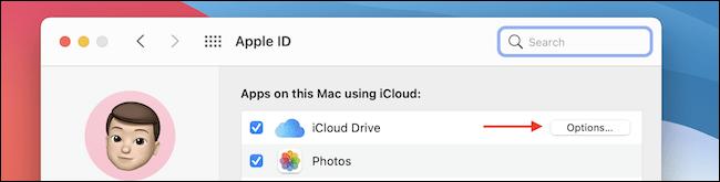 iCloud Drive.