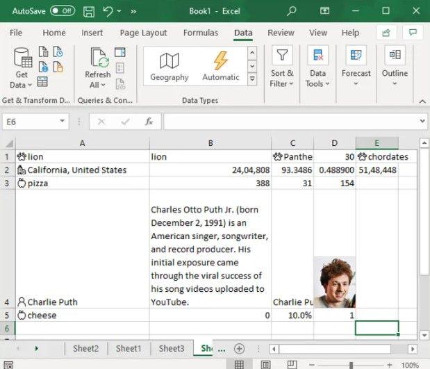 Tipo de datos añadido automáticamente en Excel.