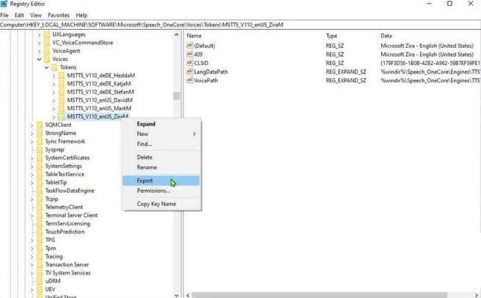 Exportar en el registro de Windows.