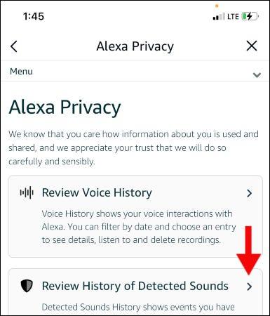 Historial de voz de Alexa.